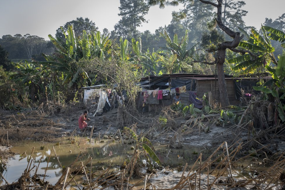 Se estima que las viviendas afectadas en Alta Verapaz superan las 49.500, y más de un millón de personas sufren las consecuencias. Las comunidades indígenas, doblemente, no sólo por los daños del huracán sino también por el abandono de las autoridades.