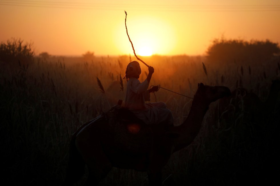 Un hombre monta un camello cerca de la aldea de Wad al Hulaywah (Sudán).